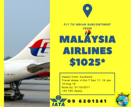 Malaysian airline special